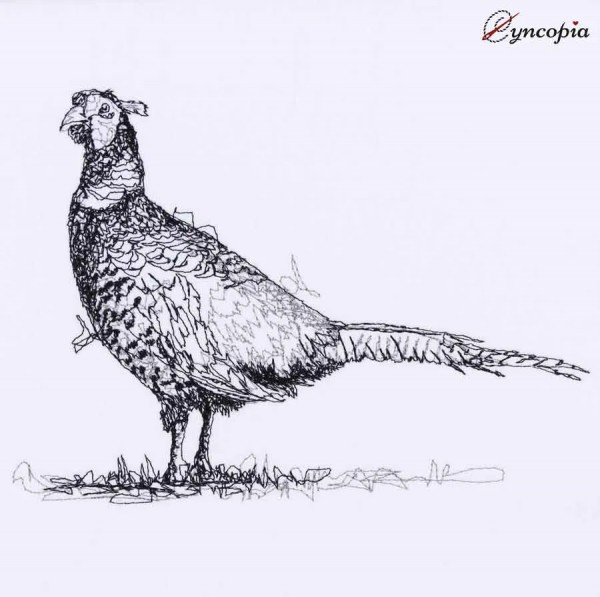 Embroidery Design Pheasant scribble