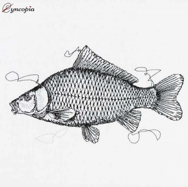 Embroidery Design Carp Scribble