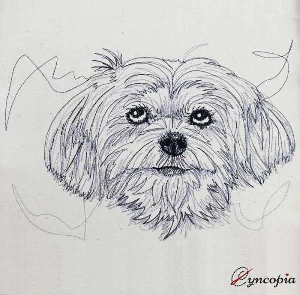 Embroidery Design Maltese Scribble