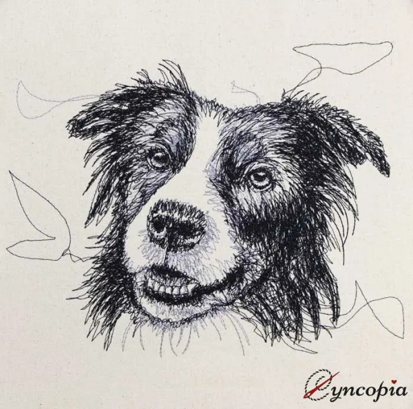Stickdatei Border Collie Scribble