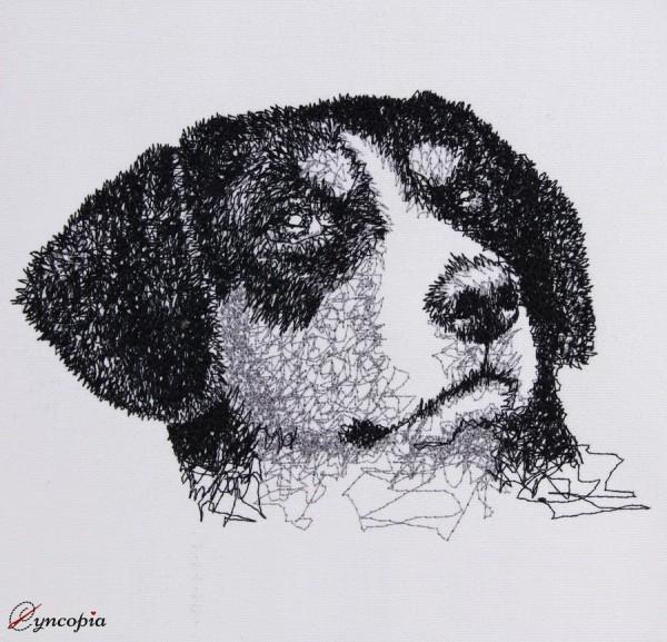 Embroidery Design Entlebuch Mountain Dog Scribble
