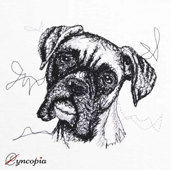Embroidery Design Boxer Scribble