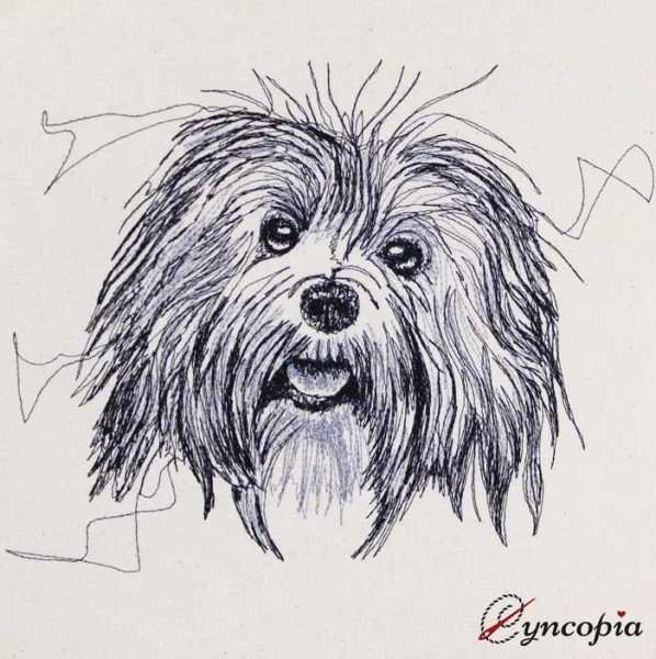 Embroidery Design Havanese scribble