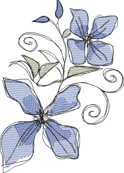 Embroidery Design Clematis drawn