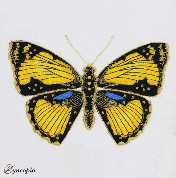 Embroidery Design Butterfly Black Yellow Blue