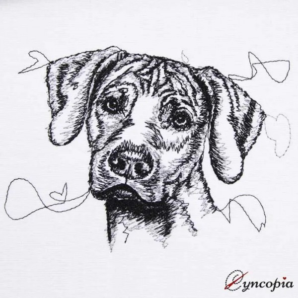 Embroidery Design Rhodesian Ridgeback Scribble