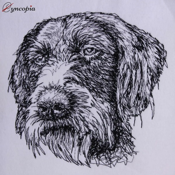Embroidery Design German Wirehaired Pointer Scribble
